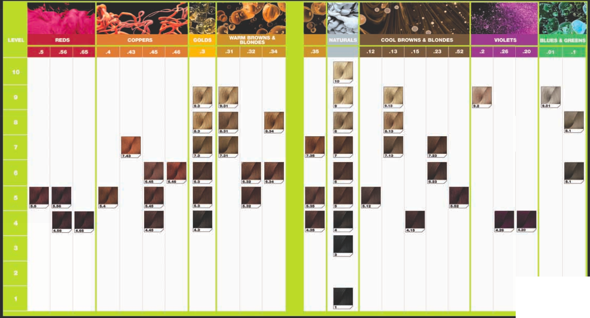 INOA salon colour chart