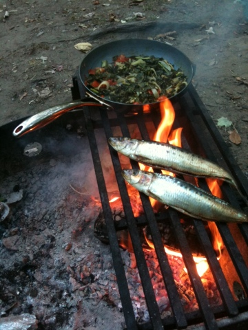 I know you know me as a fashionista, but this is how the other half (of me) lives: fresh herring on the campfire with chard and tomatoes