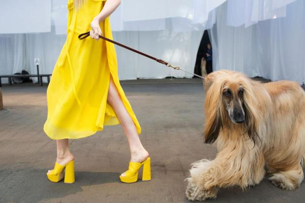 Fashion in NYC amazing. Well done Jen Kao, NY, on this shot of sunshine and shag